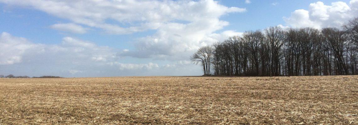Klimaschutz und Klimaanpassung in der Landwirtschaft stärken