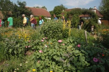 Lehrgangteilnehmer besichtigen einen Insektengarten