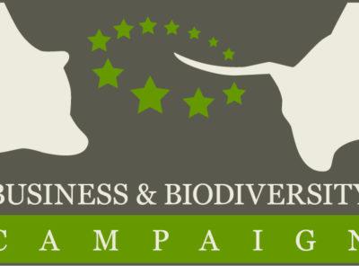 {:de}Europäische Business & Biodiversity Kampagne (EBBC){:}{:en}European Business & Biodiversity Campaign (EBBC){:}